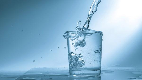 Água é fundamental para a sobrevivência das espécies e na agricultura