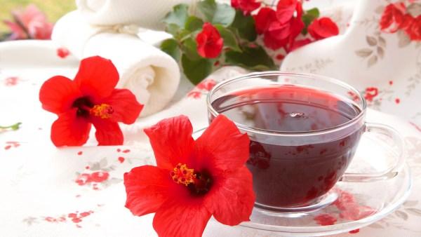 Chá de hibisco ajuda a emagrecer e tem grande popularidade no Brasil