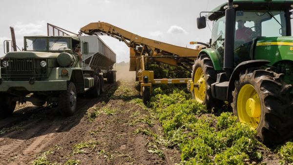 Carreta agrícola é ferramenta que facilita a vida do trabalhador rural