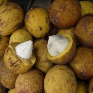 Bacuri é uma fruta comum na região Amazônica e na região Norte do país