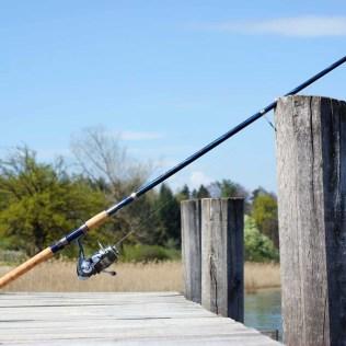 Escolher a vara de pesca ideal é essencial para obter bons resultados