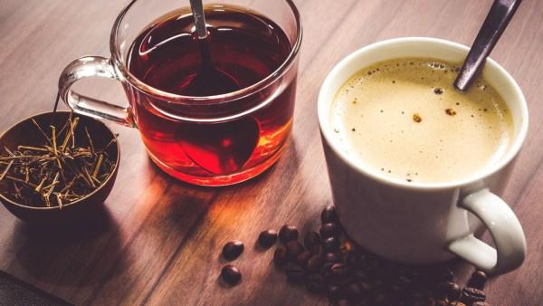 Chá é uma bebida milenar preparada com folhas, flores e plantas