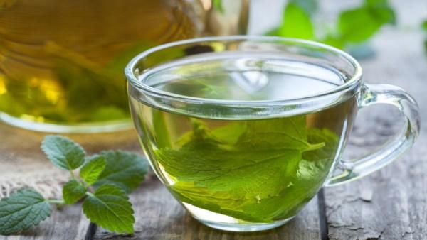 Chá de erva cidreira é calmante e bom para problemas estomacais