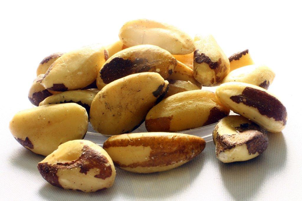 castanha do Brasil é uma fruta nativa vinda da castanheira