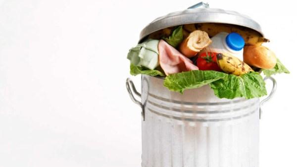 Evitar o desperdício de alimentos é fundamental para todos