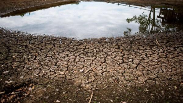 Estiagem é marcada por insuficiência de precipitação pluviométrica