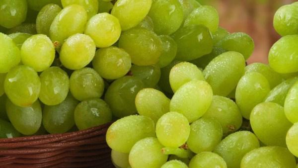 Uva verde se diferencia da roxa pelo processo de amadurecimento