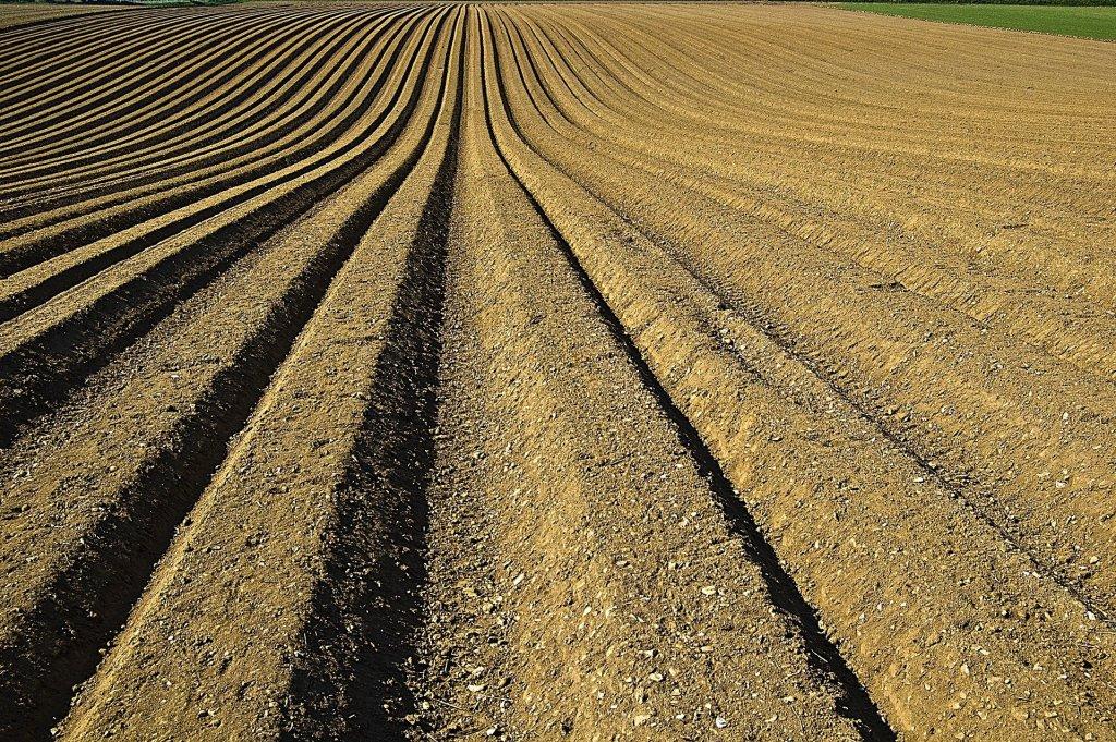 Solo agricultável é um dos focos da edafologia