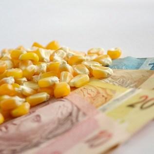 Entenda a Lei Kandir, que prevê a isenção do pagamento do ICMS