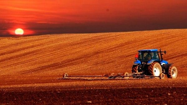Administração rural ajuda a lidar com as complexidades da lavoura