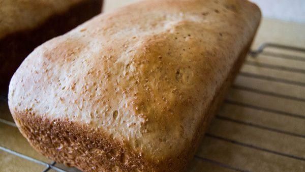 Pão Recife é um tipo de pão caseiro famoso no Nordeste