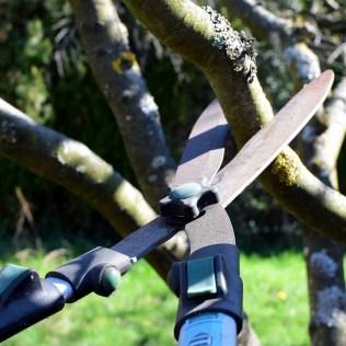 Podadora pode ser utilizada para manutenção de plantas