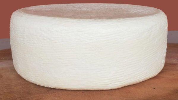 Cablanca é queijo holandês que se destaca pela qualidade