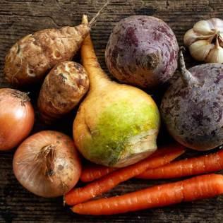 Vegetais são essenciais para a saúde e para o agronegócio