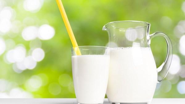 Leite desnatado tem menos gordura que leite integral