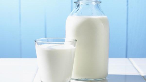 Leite semidesnatado tem menos gordura que o integral
