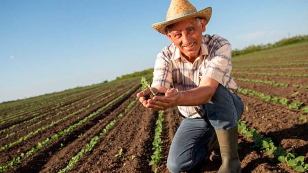 Trabalho rural é de extrema importância econômica e protegido pela Lei