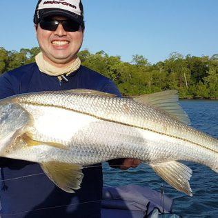Robalo é peixe de água salgada que tem várias espécies