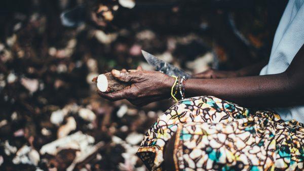 Derivados da mandioca conquistam espaço na culinária brasileira