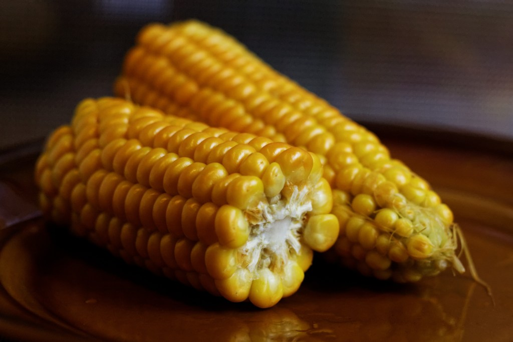 farelo de milho