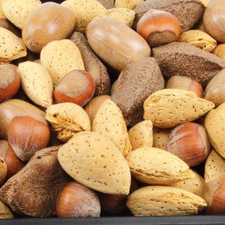 Tipos de sementes existentes no Brasil são muitos e variados