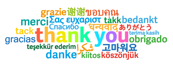 Multi Language in Salesforce