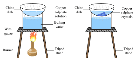 Crystallization of Copper Sulphate