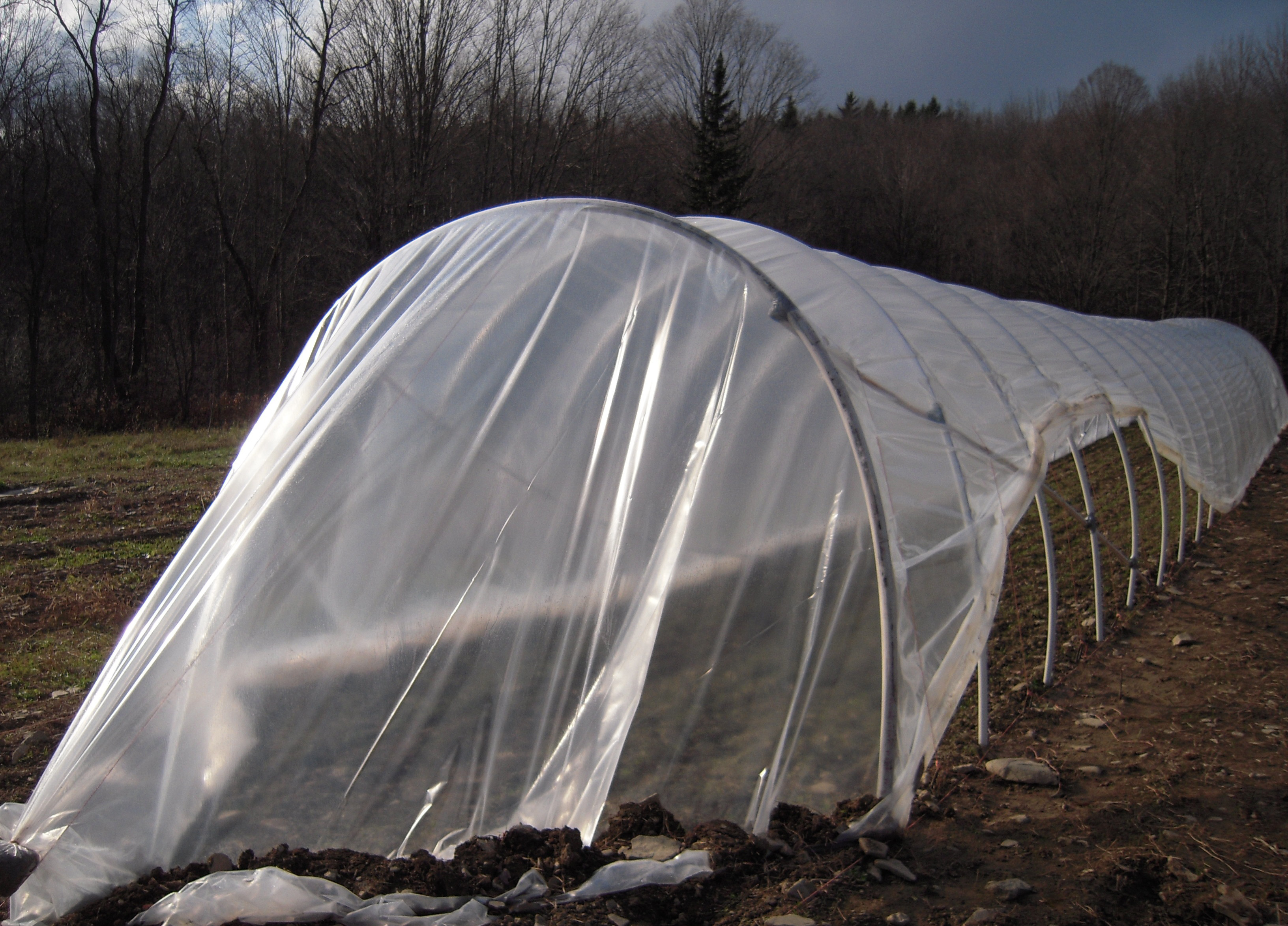 Experimenting With Caterpillars Another Option For Season