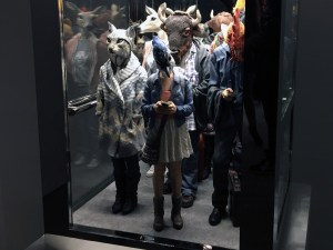 Elevator at Alessandro Gallo's For Some Reason exhibition