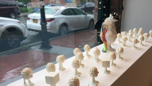 Kyle Kirwan's Cacophony - Window display