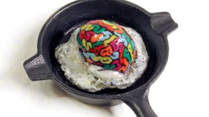 Mikie Graham's This Is Your Brain On Drugs - Custom Jumping Brain