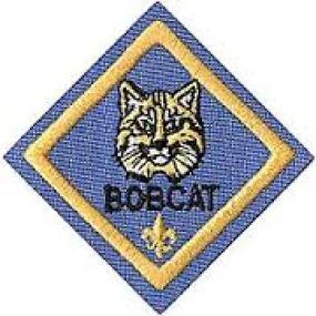 2bd0ccb6-07ca-4181-b9f8-f64b28ccef8e.jpg