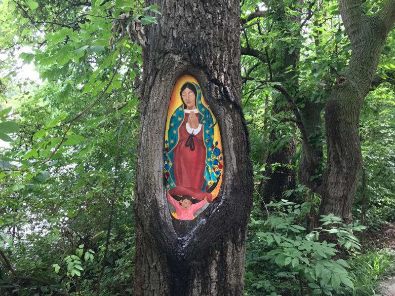 Our Lady in a tree