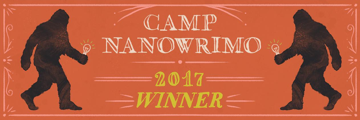 Winner 2017 - Twitter Header