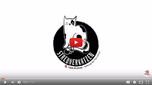 Streunerkatzenfilm