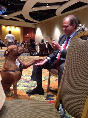 Matt and KANE, the pitbull, shake hands