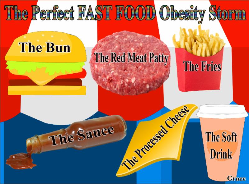 fast food nation 14 essay Read this literature essay and over 88,000 other research documents fast food nation fast food nation is about the consequences of the fast food culture that has developed in the us and has.