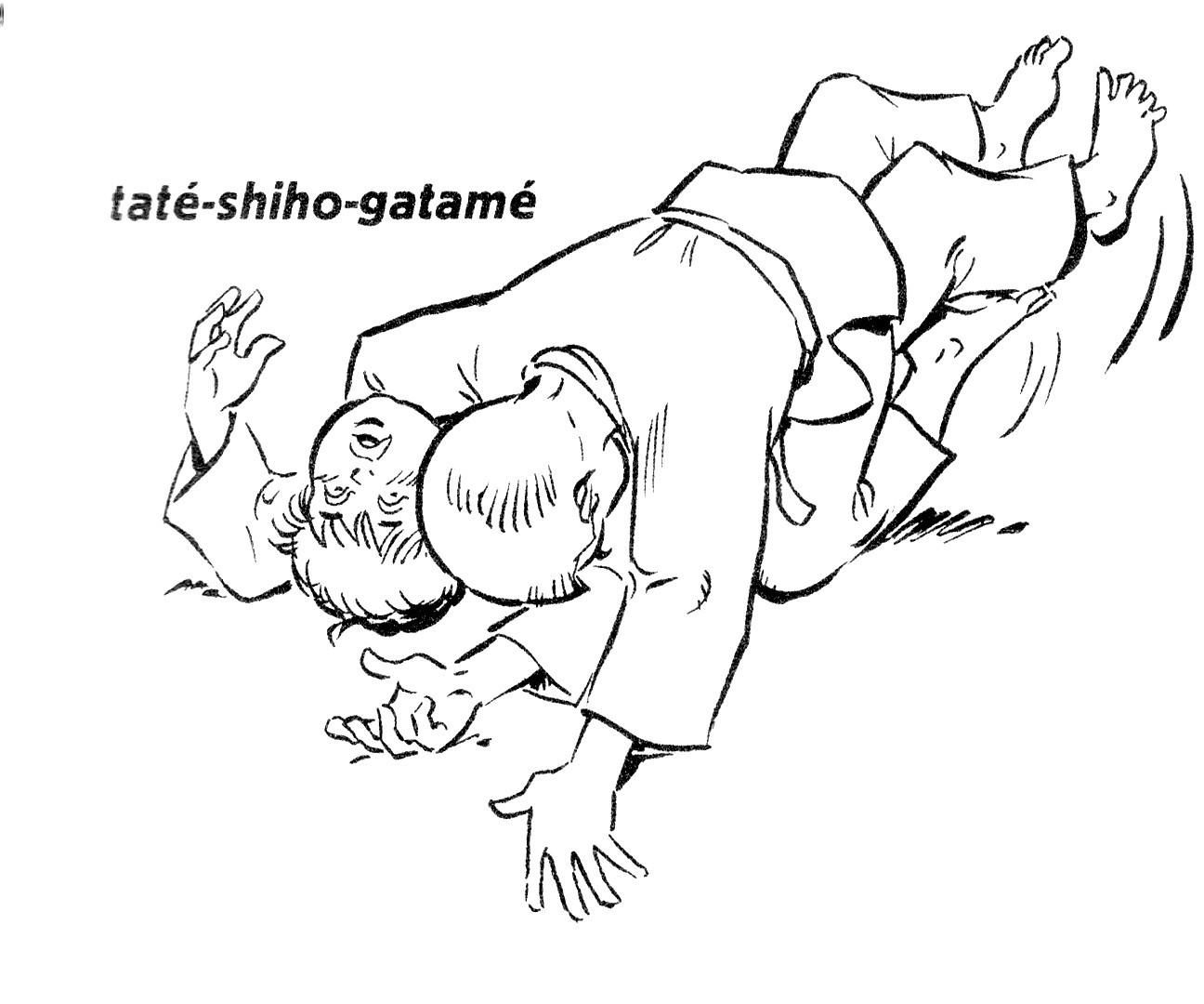 Techniques Du Judo