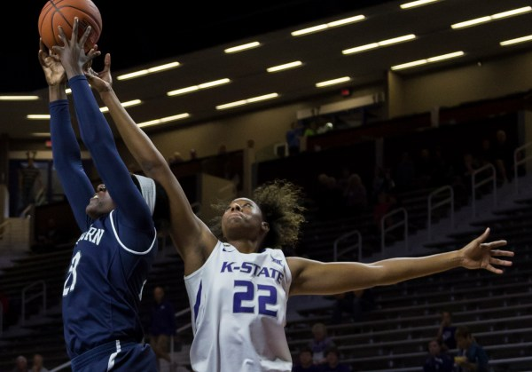 Women's basketball prepares for final exhibition | The ...