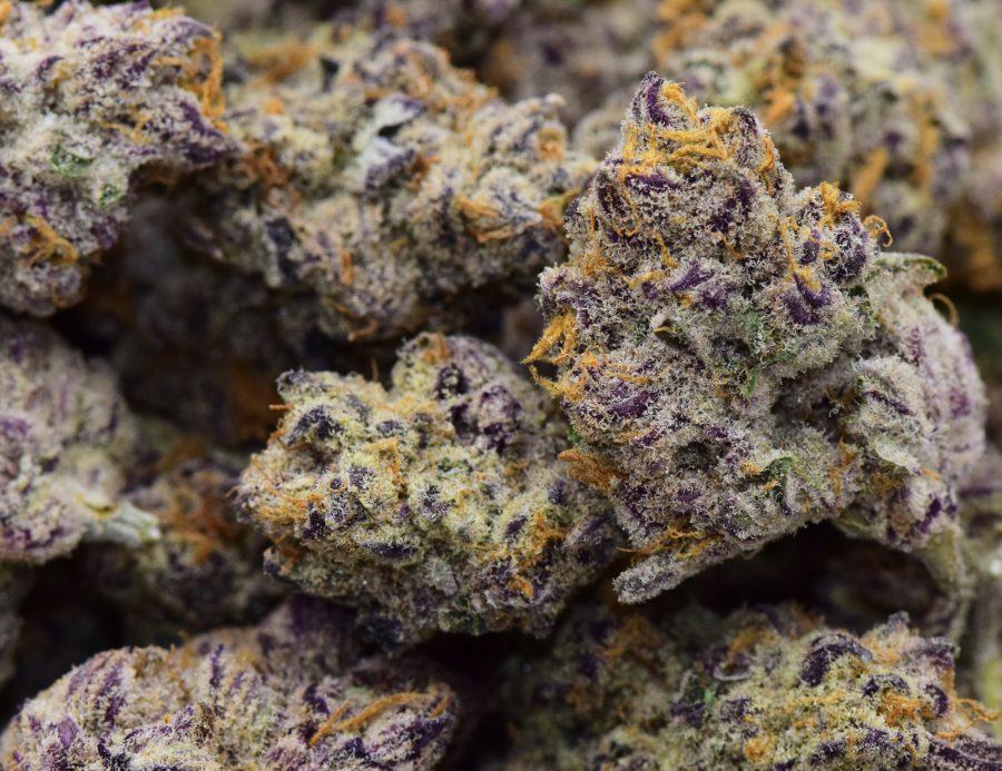 1590441316965_purplepunch.jpeg