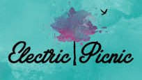 electric picnic1