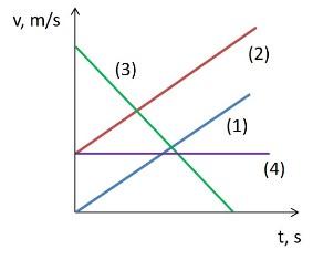 grafika4 1