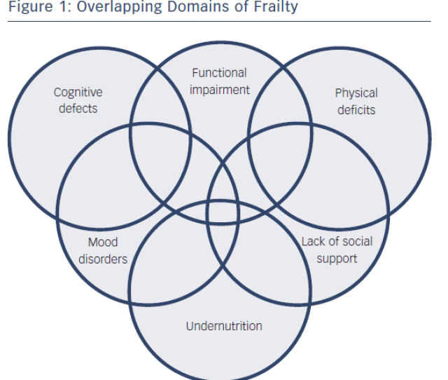 Figure 1 Overlapping Domains Of Frailty