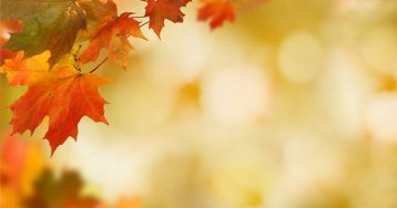 4 Reasons to Sell This Fall [INFOGRAPHIC]   Simplifying The Market