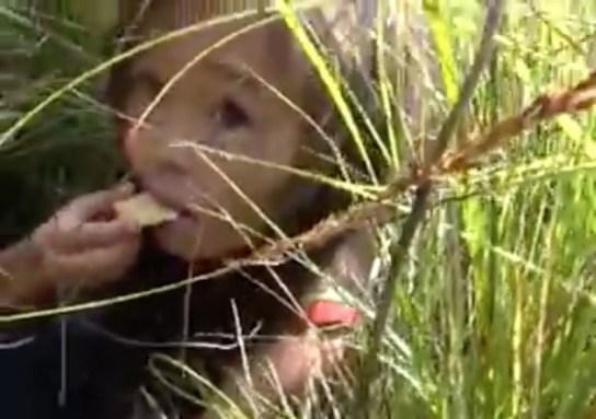 Resultado de imagen de niña de 3 años se perdio en el bosque siberiano