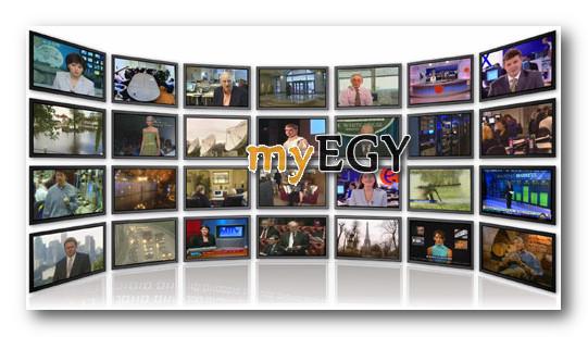 digital tv on pc pro 2013 v13.0