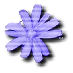 Cloanto C64 Forever Plus Edition Serial Key logo