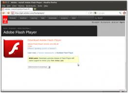 Adobe Flash Player Crack 32.0.0.114