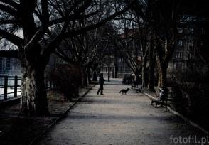 frozen-street-photos-czyli-zamrozony-wroclaw-11