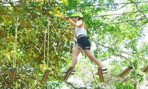 Lopen in boomtoppen Bohol Filipijnen